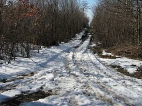 márciusi hó